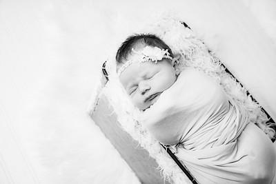 00019--©ADHphotography2019--MaggieJaneHardin--Newborn--March11