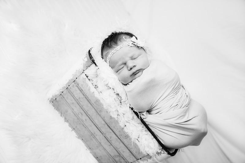 00015--©ADHphotography2019--MaggieJaneHardin--Newborn--March11