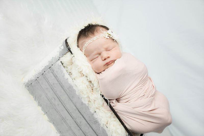 00008--©ADHphotography2019--MaggieJaneHardin--Newborn--March11