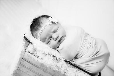 00005--©ADHphotography2019--MaggieJaneHardin--Newborn--March11