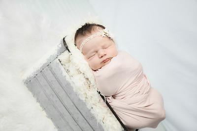 00010--©ADHphotography2019--MaggieJaneHardin--Newborn--March11