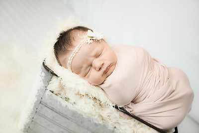 00004--©ADHphotography2019--MaggieJaneHardin--Newborn--March11