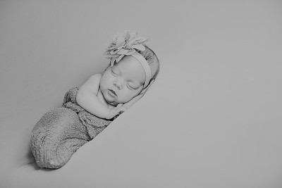 00022--©ADH Photography2017--MakennaDaffer--Newborn
