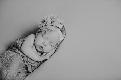 00016--©ADH Photography2017--MakennaDaffer--Newborn