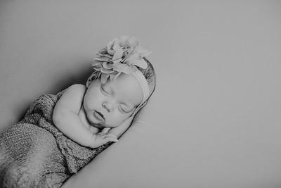00018--©ADH Photography2017--MakennaDaffer--Newborn