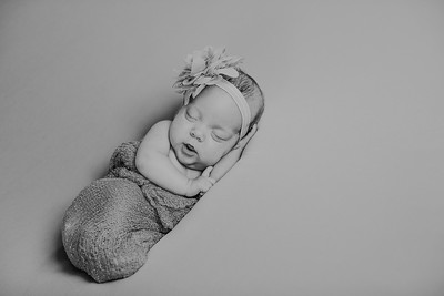 00014--©ADH Photography2017--MakennaDaffer--Newborn