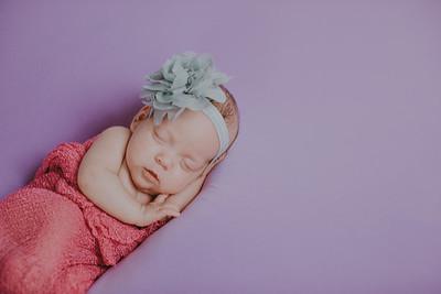 00015--©ADH Photography2017--MakennaDaffer--Newborn