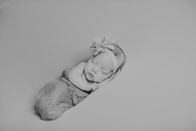 00004--©ADH Photography2017--MakennaDaffer--Newborn