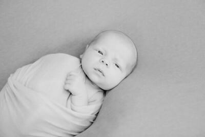 00010--©ADH Photography2017--MarshallStapp--Newborn