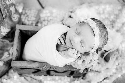 00016--©ADHPhotography2019--CoraMiller--NewbornAndFamily-May3