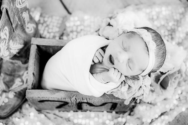 00020--©ADHPhotography2019--CoraMiller--NewbornAndFamily-May3