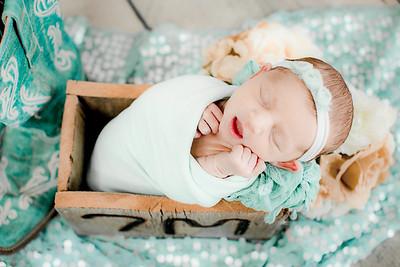 00019--©ADHPhotography2019--CoraMiller--NewbornAndFamily-May3