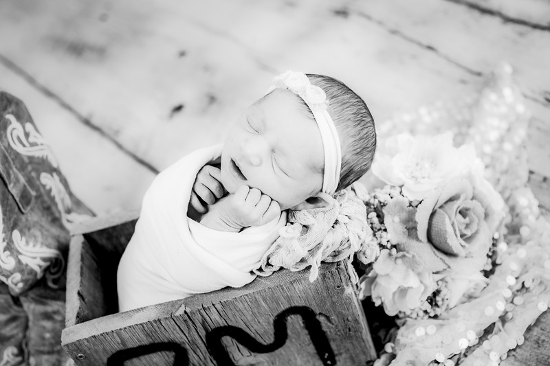 00024--©ADHPhotography2019--CoraMiller--NewbornAndFamily-May3