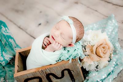 00023--©ADHPhotography2019--CoraMiller--NewbornAndFamily-May3