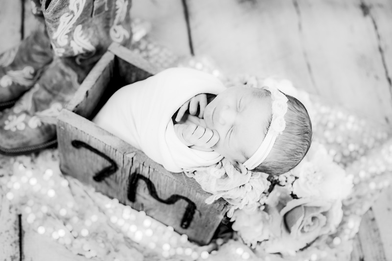 00014--©ADHPhotography2019--CoraMiller--NewbornAndFamily-May3