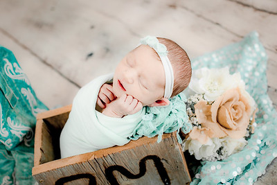00021--©ADHPhotography2019--CoraMiller--NewbornAndFamily-May3