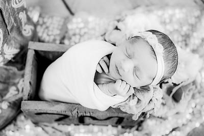 00018--©ADHPhotography2019--CoraMiller--NewbornAndFamily-May3