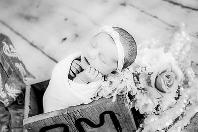 00022--©ADHPhotography2019--CoraMiller--NewbornAndFamily-May3