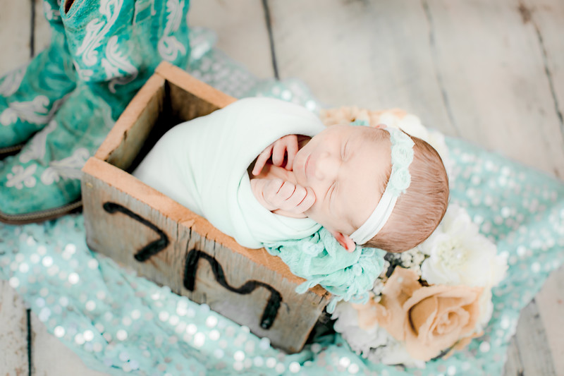 00013--©ADHPhotography2019--CoraMiller--NewbornAndFamily-May3