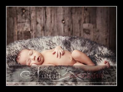 Noah Newborn 41