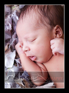 Noah Newborn 26