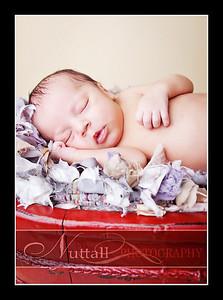 Noah Newborn 25
