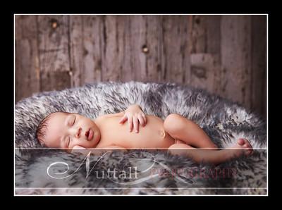Noah Newborn 40