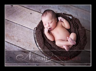 Noah Newborn 17
