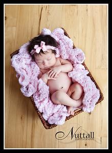 Cook Newborn 157