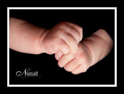 Cook Newborn 077