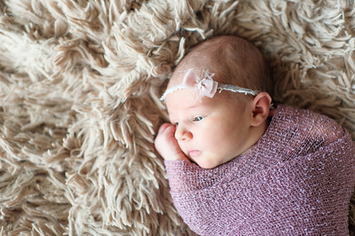Olivia Newborn ~12 2013-015