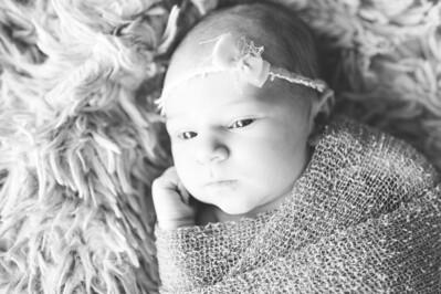 Olivia Newborn ~12 2013-023