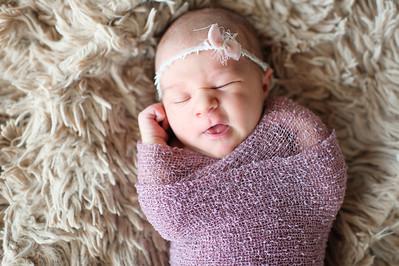 Olivia Newborn ~12 2013-017