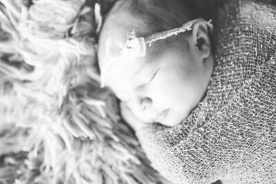 Olivia Newborn ~12 2013-020