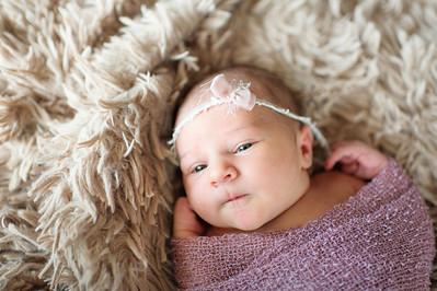 Olivia Newborn ~12 2013-013