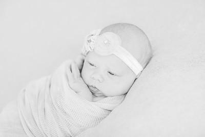 00022--©ADH Photography2017--OlympiaWarren--Newborn