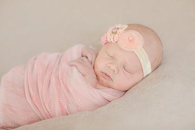 00001--©ADH Photography2017--OlympiaWarren--Newborn