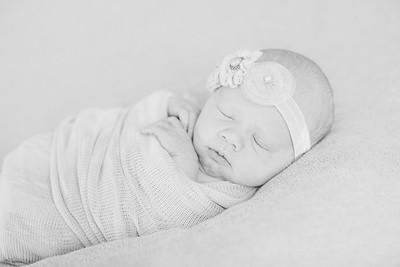 00002--©ADH Photography2017--OlympiaWarren--Newborn