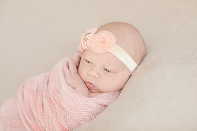 00021--©ADH Photography2017--OlympiaWarren--Newborn