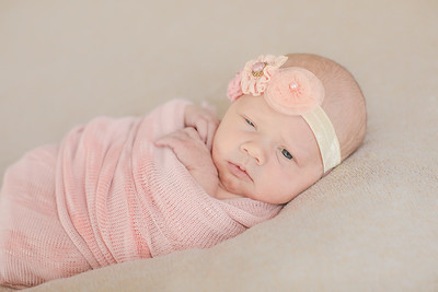 00005--©ADH Photography2017--OlympiaWarren--Newborn