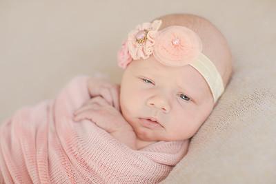 00009--©ADH Photography2017--OlympiaWarren--Newborn