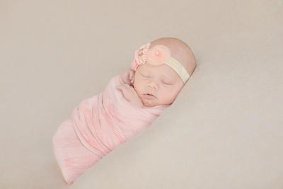 00015--©ADH Photography2017--OlympiaWarren--Newborn