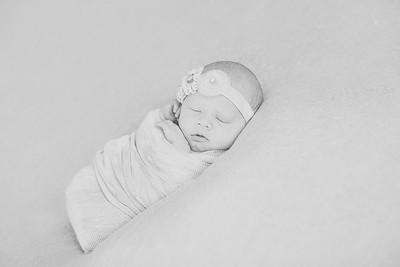 00012--©ADH Photography2017--OlympiaWarren--Newborn