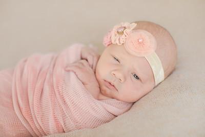 00007--©ADH Photography2017--OlympiaWarren--Newborn