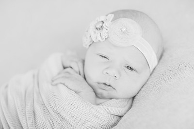 00010--©ADH Photography2017--OlympiaWarren--Newborn
