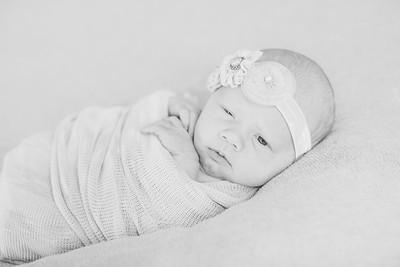 00006--©ADH Photography2017--OlympiaWarren--Newborn
