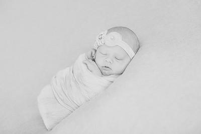 00018--©ADH Photography2017--OlympiaWarren--Newborn