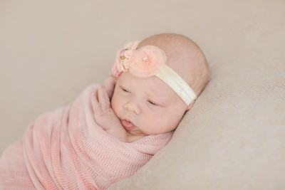 00019--©ADH Photography2017--OlympiaWarren--Newborn