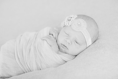 00004--©ADH Photography2017--OlympiaWarren--Newborn