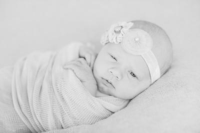 00008--©ADH Photography2017--OlympiaWarren--Newborn
